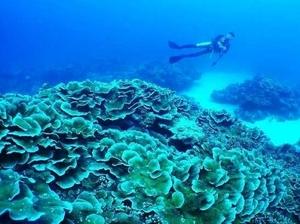 【沖縄】ランキング上位の慶良間諸島のホテル!予算内でより良いホテル選びを