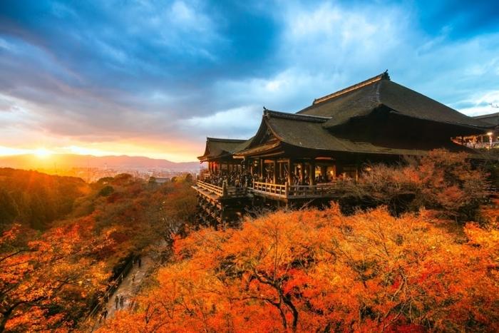 【京都】観光するならここだ!2000ヶ所以上から選出した寺社・仏閣30選