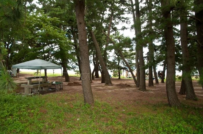 たっぷり遊んでお風呂は最高!関西の温泉付きオートキャンプ場