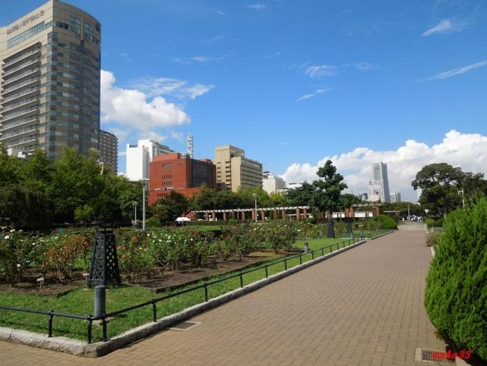 【横浜】山下公園周辺のおすすめデートスポット:のんびり散歩中に寄りたい5選