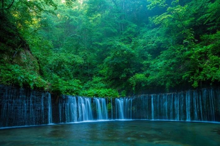 【長野】軽井沢でおすすめの自然を感じられる観光スポット5選