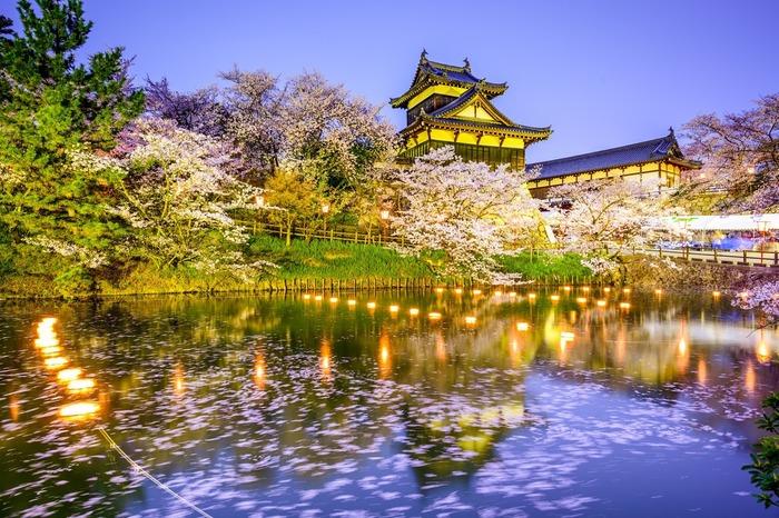 【奈良】桜と鹿、寺社仏閣がコラボ! 楽しみ方色々なお花見スポット5選