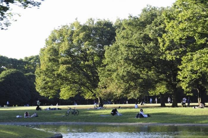 【東京】お弁当を持ってピクニックに出かけたくなる都内の公園5選