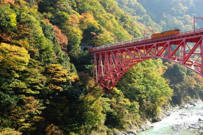富山】黒部峡谷を120%楽しめるト...