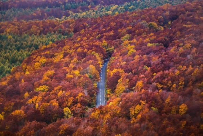 東北の紅葉名所ツアー2018年版:赤じゅうたんの広がる絶景の登山スポットまとめ