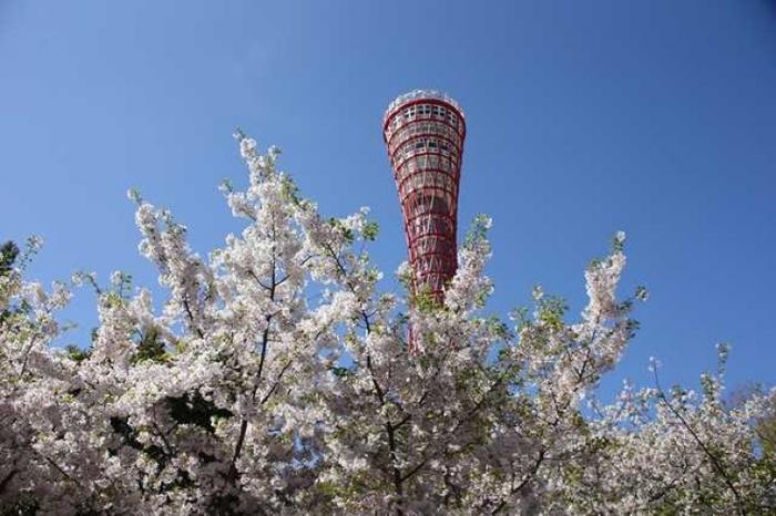 【神戸】デートスポットに迷ったらココ!まる一日大満足なおすすめ神戸ガイド