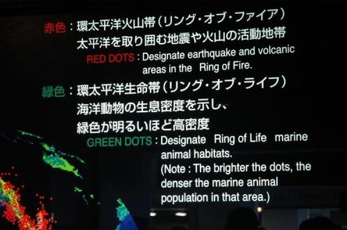 【大阪】世界最大級の水族館!海の世界を体感できる海遊館見所ガイド