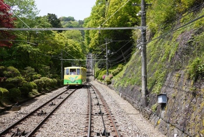 【東京】おでかけ要素が盛りだくさん!「高尾山」の魅力