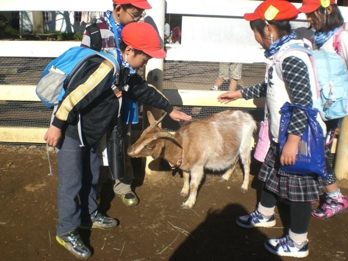 【千葉】USJを超えた! 日本の人気テーマパーク3位「アンデルセン公園」を徹底紹介