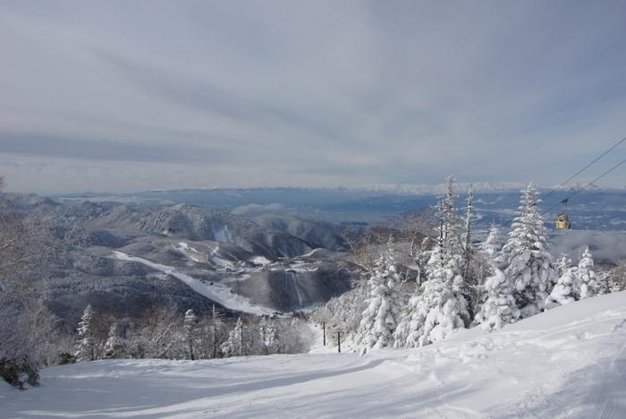 13の個性的なスキー場が集結! 志賀高原スキーリゾート徹底ガイド