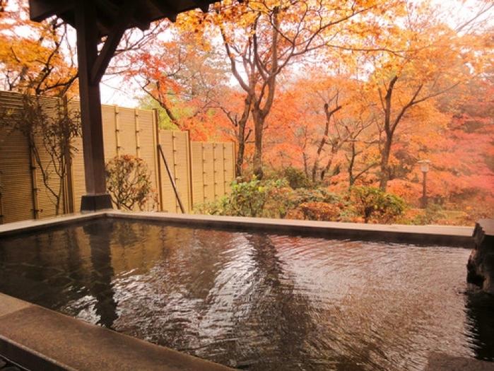 【箱根】紅葉を見るなら! 部屋から紅葉が見られる絶景の旅館&ホテル5選