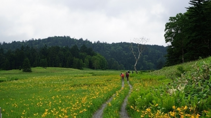 【群馬】初めての山小屋泊登山は、気分爽快の尾瀬へ