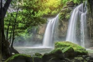 屋久島で行きたいおすすめの定番観光地47選