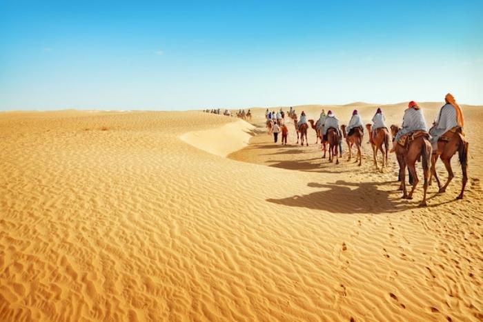 ラクダが並ぶ砂漠
