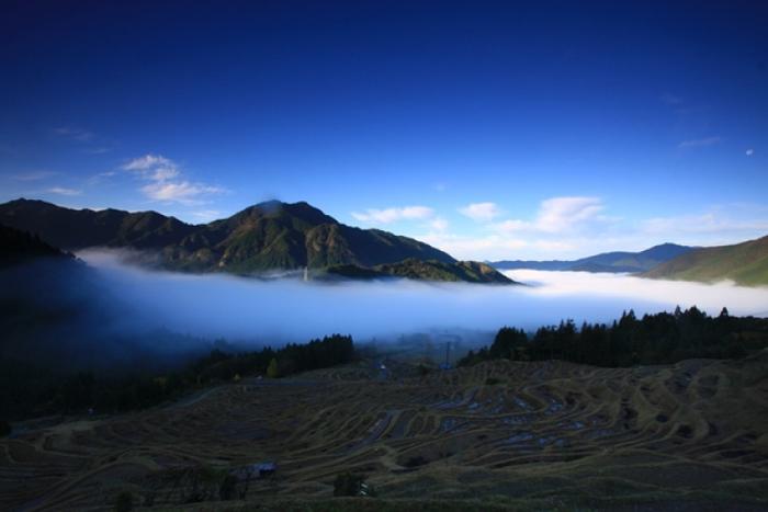 【三重】日本の原風景、美しい棚田が広がる丸山千枚田の見どころガイド