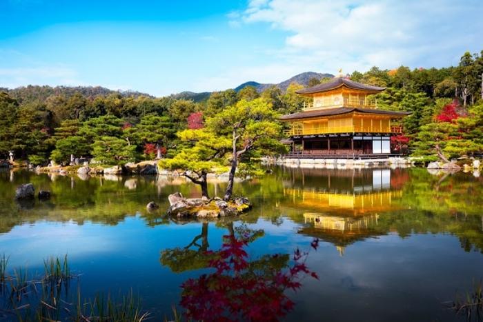 【京都】京都水族館と世界遺産のどちらも楽しめるのんびり観光ガイド