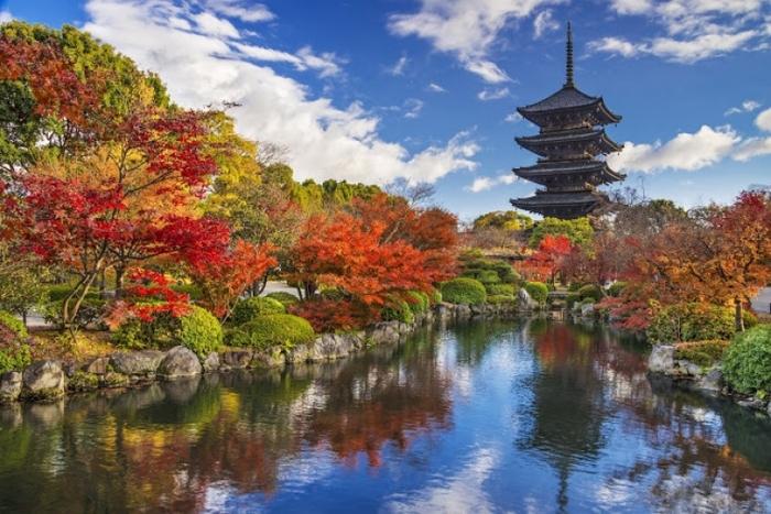 【2018年版】紅葉を手軽に見られる京都水族館近くの人気スポット4選