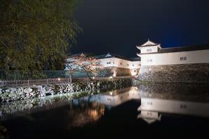 【滋賀】彦根市で伝統と創造があふれる魅力満載のおすすめ観光スポット5選