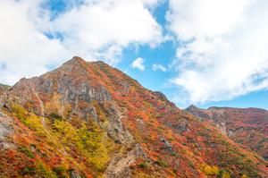 【栃木県】那須の観光・宿泊におすすめの民宿5選
