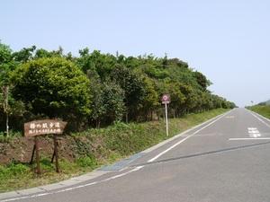 【東京都】大島の観光・宿泊におすすめの民宿5選