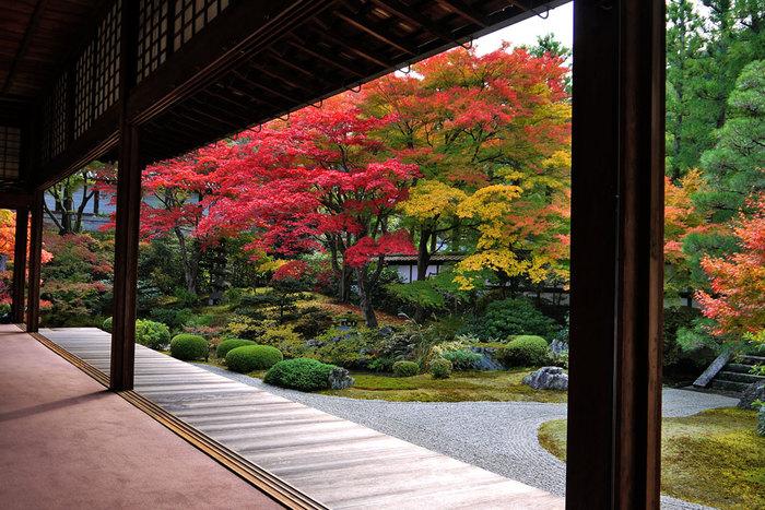 【京都の紅葉2018年版】紅葉の名所おすすめ60選:見頃も合わせてチェック!
