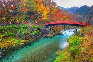 栃木で行きたいおすすめの観光スポット35選