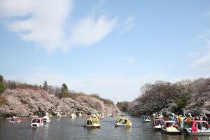 【東京】のびのび遊べる!東京の広い公園50選