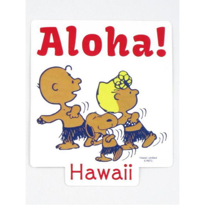 持ってるだけでハワイ気分を味わえるハワイのおすすめお土産29選