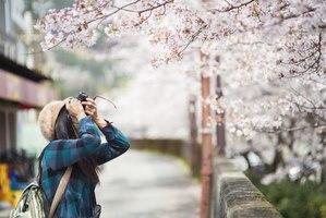 【静岡】王道スポットでグルメも楽しもう♪観光地10と寄り道スポット