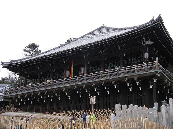 奈良公園を楽しむための理想コース&観光の注意点ガイド