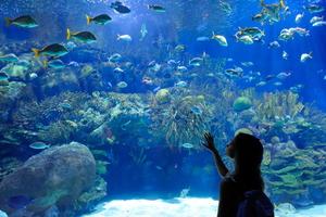 【福島】いわきのおすすめホテル♪スパや水族館を楽しもう