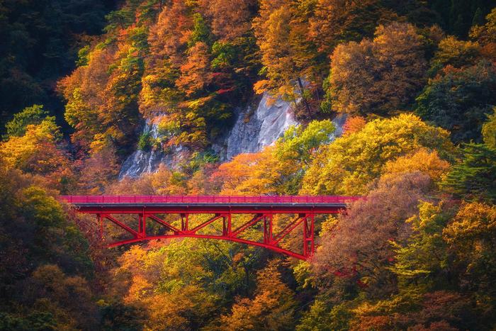 【2019年版】長野でおすすめの紅葉スポット:見頃の時期を紹介
