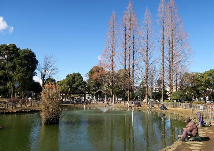 【東京】都内のおすすめ公園一覧:広い敷地で子供と遊べる15施設
