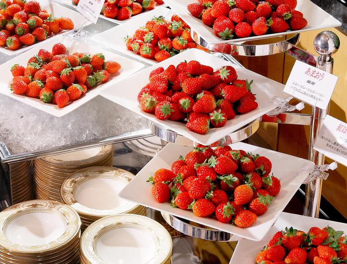【横浜】いちご食べ放題!おすすめの苺&スイーツビュッフェ