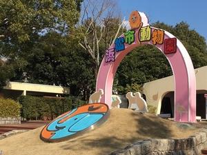浜松市動物園:120種類を超える多彩な動物!