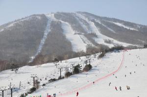 岩手のおすすめスキー場:ランキング上位一覧