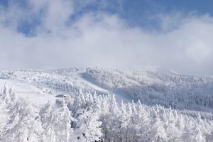 宮城のおすすめスキー場:ランキング上位一覧