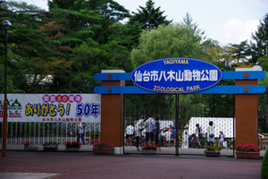 仙台市八木山動物公園ってどんなところ? 家族で楽しい!子供が学べる!楽しい施設