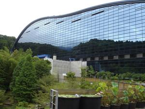 福岡のおすすめ博物館15施設!楽しい驚き福岡で発見