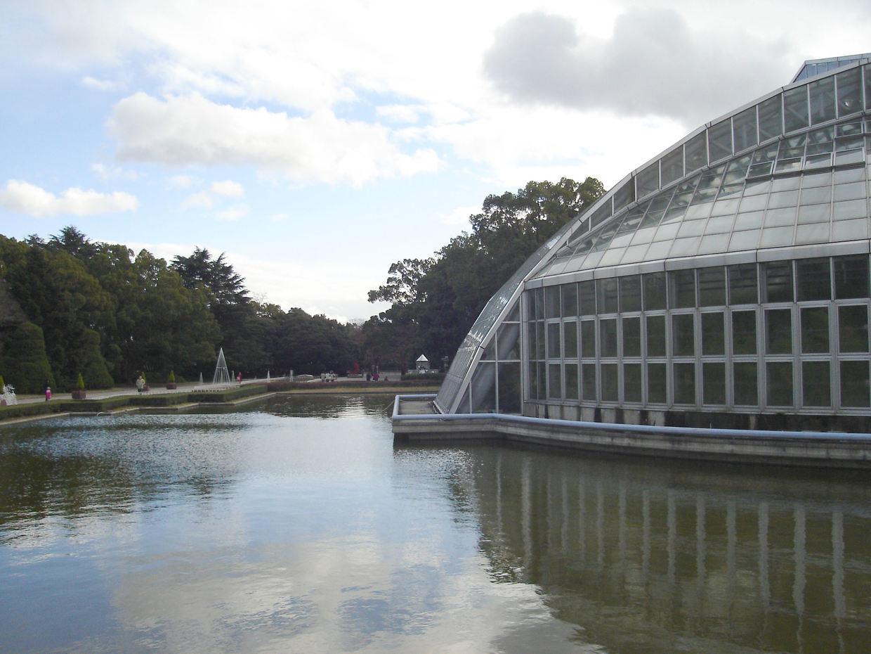 京都府立植物園:観光の季節の花の見どころ・基本情報まとめ