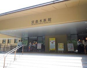 【広島】宮島水族館:日本有数の景勝地と、瀬戸内の自然と生き物をセットで楽しめる