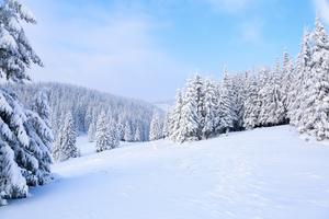 栃木のおすすめスキー場:ランキング上位一覧