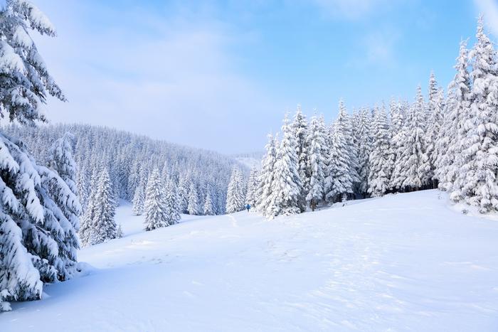 【2019-2020年版】栃木のおすすめスキー場:首都圏からも近いランキング上位から紹介!