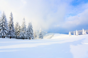 関東のおすすめスキー場:ランキング上位一覧