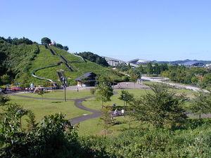 宮城県総合運動公園:スポーツからレジャーまで幅広く楽しめる!自然と調和したレジャーエリア