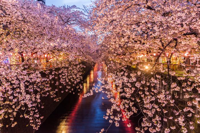 【東京】中目黒のおすすめデートスポット♡素敵な1日を夜まで楽しもう