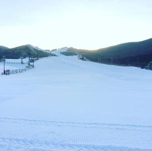 九重森林公園スキー場:九州最大の広さを誇る初心者~中級者向けスキー場!