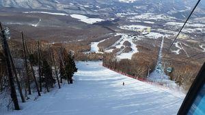 【岩手】安比(あっぴ)高原スキー場:日本有数の大スキー場!初心者でも5,5kmのロングラン!