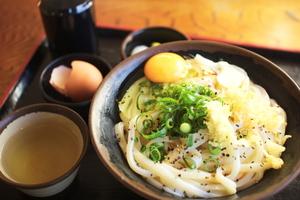香川のおすすめうどん10店:人気ランキング上位のお店一覧