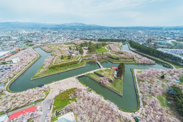 函館で行っておきたいおすすめ花見の名所5選